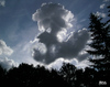 Cartoon: cloud face 18 (small) by besscartoon tagged wolken,himmel,cloud,face,gesicht,bess,besscartoon