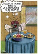 Flies and soups